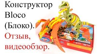 Bloco (Блоко). Конструктор Bloco (Блоко) - видеообзор, отзыв. Набор Bloco - Velocirator & Pterosaur