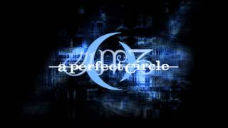 A Perfect Circle - The Hollow (acoustic)