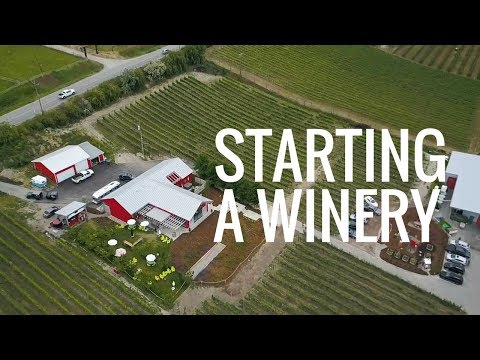 Heidi Noble: On Starting A Winery