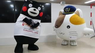 くまモン、お姉さんとハンドボール対決?!@東京シティエアターミナル2018/09/24