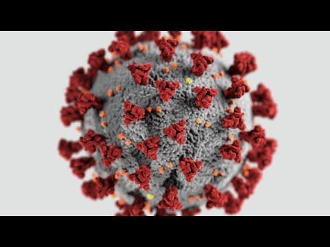 الصين تسجل إصابات جديدة بفيروس كورونا لكن ما من أعراض | جولة جديدة من #أخبار_الآن  - نشر قبل 1 ساعة