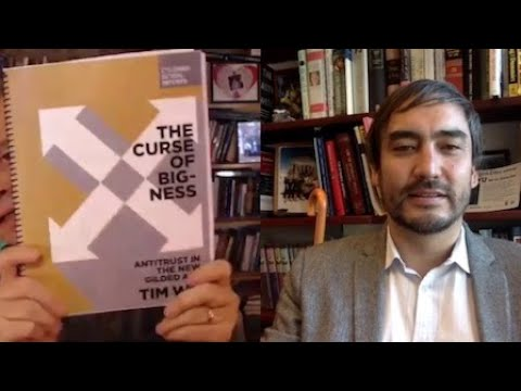 The Curse of Bigness | Robert Wright & Tim Wu [The Wright Show]