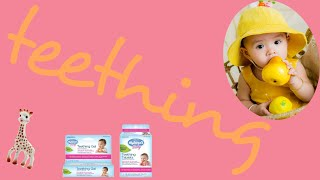 Natural Homeopathic Teething Tablets & Gel Hyland's Baby Teething Products