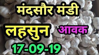 मंदसौर मंडी लहसुन आवक 17-09-19 ,कृषि बाजार भाव ,Garlic bhav ,mandi bhav ,neemuch mandi,