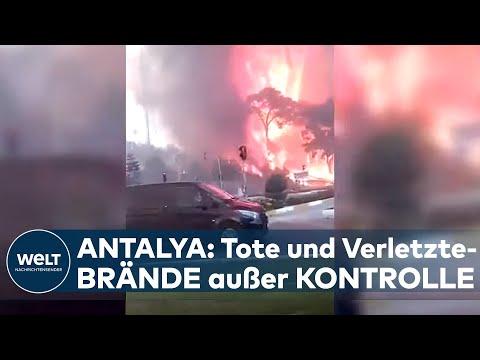 TÜRKEI: TOTE und VERLETZTE! Riesige Waldbrände wüten in der Mittelmeer-Region Antalya I WELT News