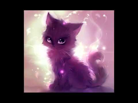 Картинки котиков ! Котики ня!