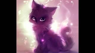 Картинки Котиков под музыку