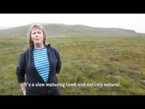 Get Behind The Label - Sybil the Sheep farmer