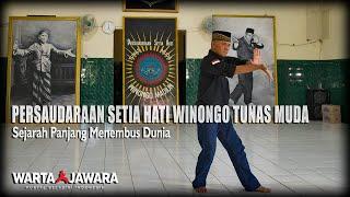 Cover images Persaudaraan Setia Hati Winongo Tunas Muda, Sejarah Panjang Menembus Dunia | Warta Jawara