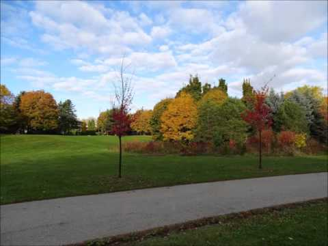 SPRING, SUMMER, AUTUMN and WINTER AT FLEET WOOD PARK, MISSISSAUGA, CANADA, May 2016