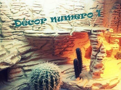 D cor d sertique mes pogonas youtube - Decor fond terrarium desertique ...