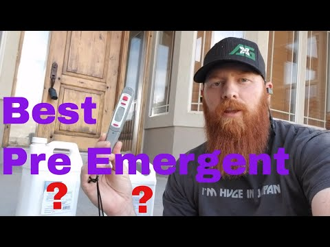 What's the best Pre Emergent? Pre Emergent how to and DIY
