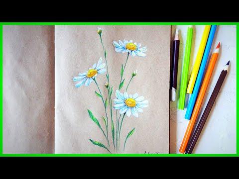 Ромашки цветными карандашами! Подробно!