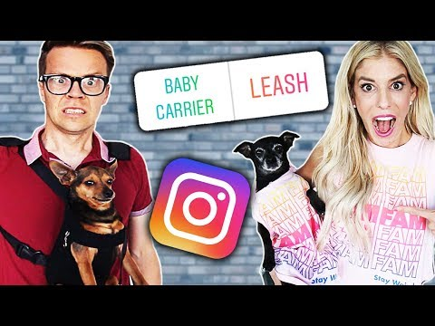 Letting our Instagram Followers Control Our Lives for 24 Hours | Pawzam Dogs