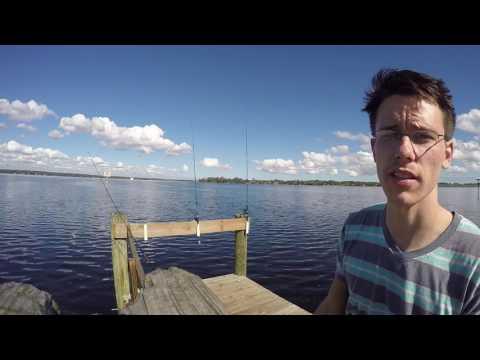 Catfishing On Doctors Lake, Florida. Another PB!