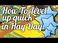 How to level up in Hay Day! - Hay Day Guide