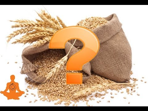 Are Whole Grains Healthy For You?