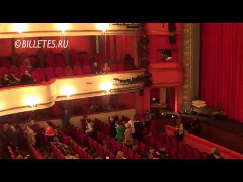 Театр им. Маяковского, зрительный зал