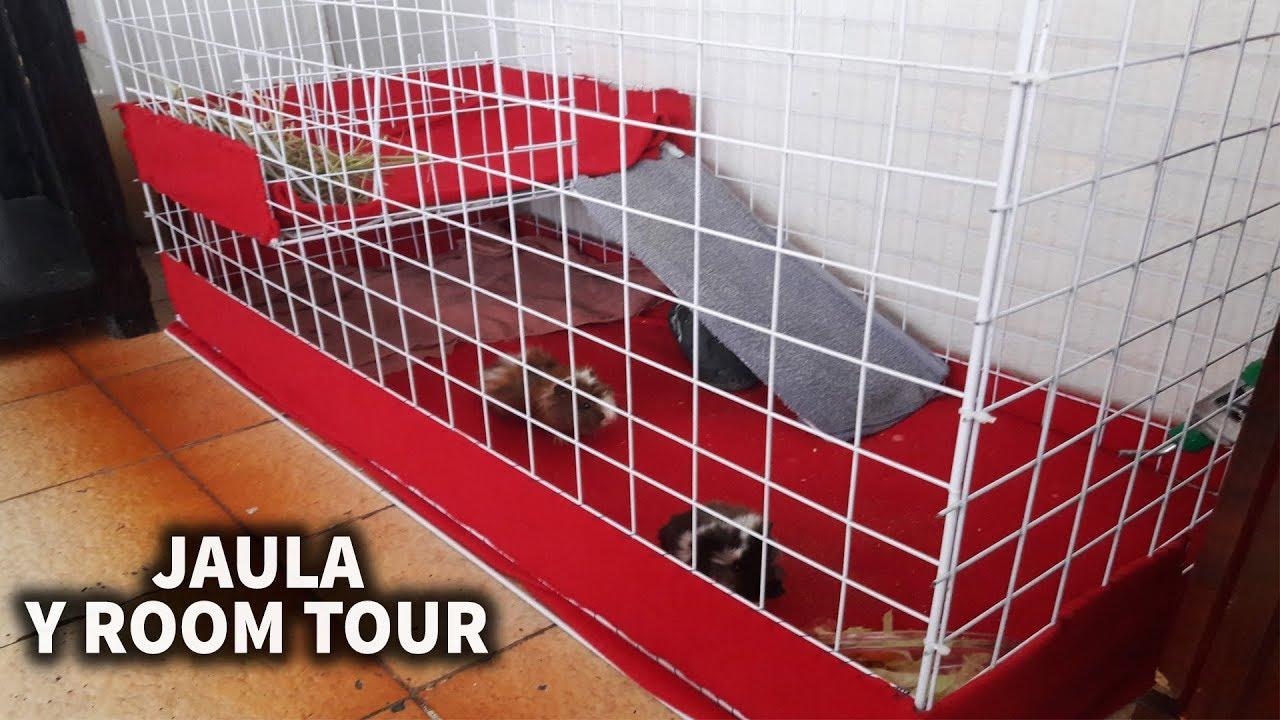 Como hacer una casa para cobayas cuyos conejos y room tour - Como crear tu casa ...