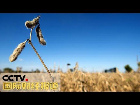 《国际财经报道》 美国农业援助计划遭诟病 20190525   CCTV财经
