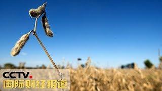 《国际财经报道》 美国农业援助计划遭诟病 20190525 | CCTV财经