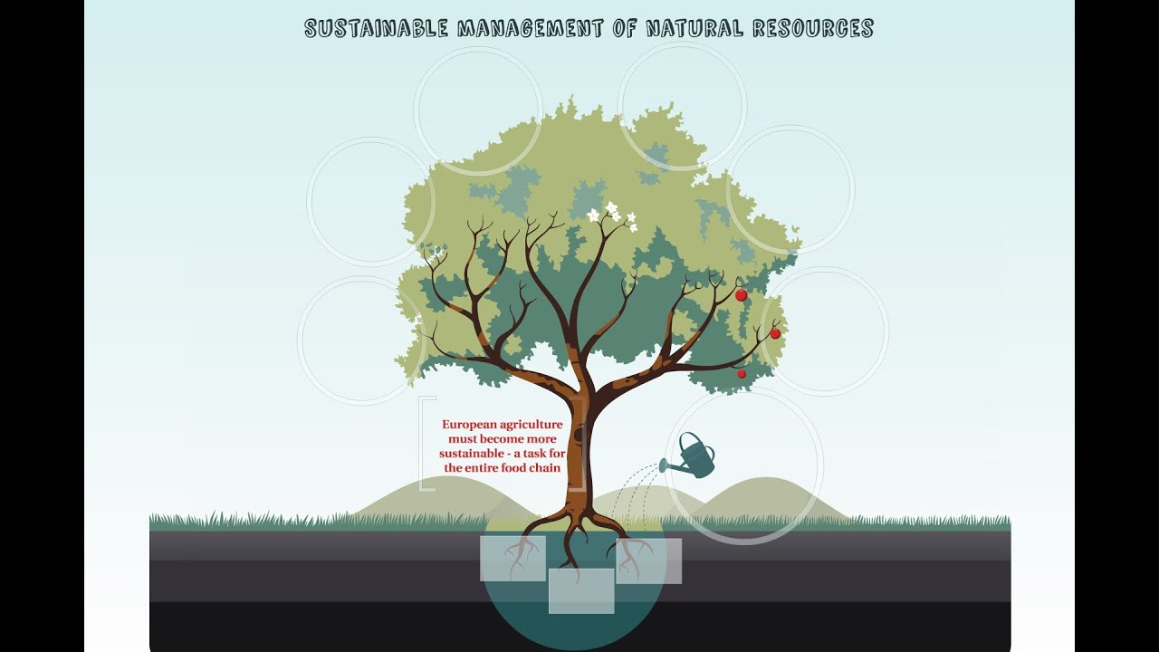 Sustainable management of natural resources - YouTube