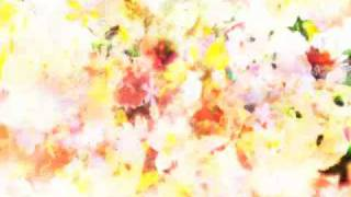 【MV】SCH-014 Grassland / Akira Kosemura