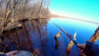 Рыбалка на торфяном диком озере среди лесных ручьёв Рыбалка на поплавок как в детстве