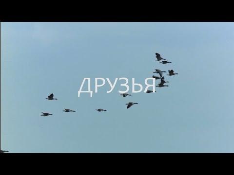 Официальный сайт администрации сельского поселения Леонтьево