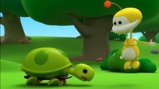 Kijk Snelle schildpad filmpje