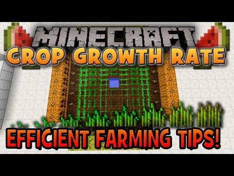 Minecraft: Crop Growth Rate (Efficient Farming Tips)