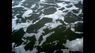 Εξάρχεια (Τέλος Εποχής) - Αρλέτα