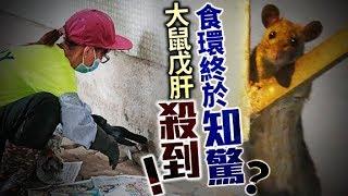 東方日報A1:鬧市衞生差政府防疫渣 增散播風險恐交叉感染