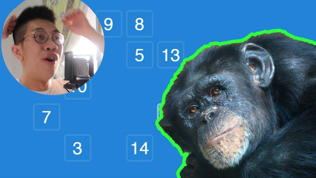 這個網站會告訴你有沒有比黑猩猩聰明?!如果低於平均測驗成績 挑戰就中止!Human Benchmark | 小實況尾巴 | 小尾巴