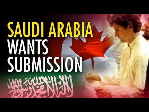 "Anthony Furey: ""Saudi Arabia's trying to make Canada submit"" 