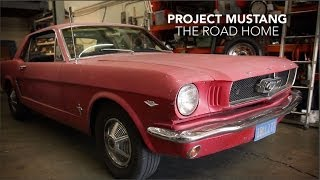 Mustang Road Trip | The Road Home