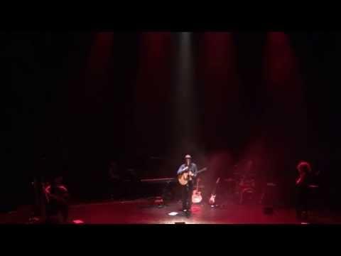 The Irrepressibles: Nude: Viscera (Live)