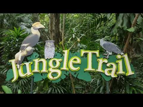 Wildlife Park | Sunway Lagoon Malaysia Part 1