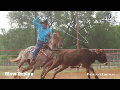 Clay Logan Shares Tips On Training A Heel Horse