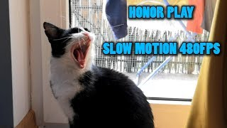 Honor Play - Slow Motion 480fps Test