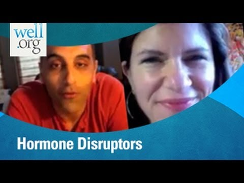 Hormone Disruptors With Drs Sara Gottfried And Pedram Shojai | Well.org