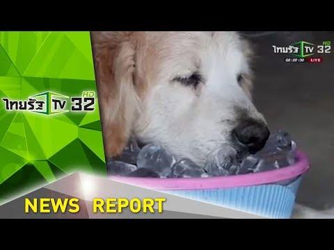 สีสันข่าวเช้าไทยรัฐ | 22-03-61 | ข่าวเช้าไทยรัฐ