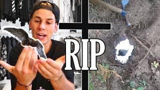 Wir mussten ihn begraben ...