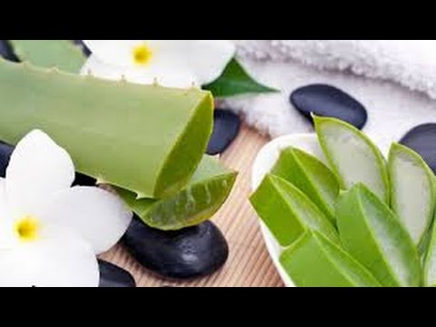 Curative effect of Aloe vera / Natural Master No.1