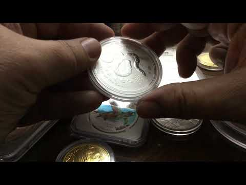 Gold & Silver Stacking & Collecting Coins