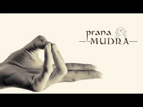 11 Basic Mudras You Need To Know And The Philosophy Behind Them