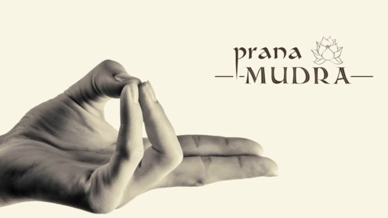 Download 11 Basic Mudras You Need To Know And The Philosophy Behind Them