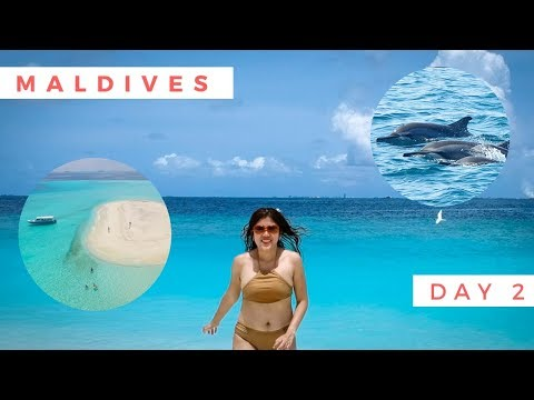 MALDIVES ON A BUDGET DAY 2: SAND BANK TRIP, SNORKELLING & DOLPHIN WATCHING