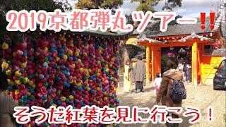 2019年京都紅葉状況です〜 この動画の詳しい記事は、はてなブログ、とっきー「旅の思い出日誌」までどうぞ。 https://www.herumusuree.work.