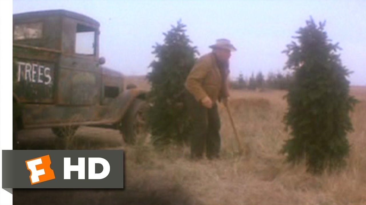 1941 4 11 Movie CLIP Japanese Christmas Trees 1979 HD YouTube - Japanese Christmas Tree